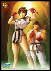 UFS Street Fighter 'Reluctant Icon' by JasonCardy