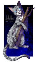 Jayfeather by beneheartcat