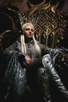 Thranduil. King of Mirkwood Realm by the-ALEF