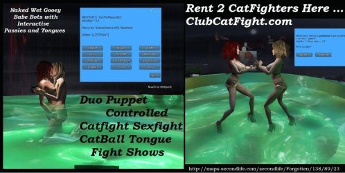 Duo CatFight Shows by westcat