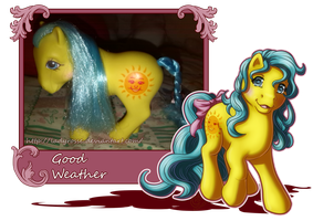 MLP Collection: #6 Good Weather by LadyRosse