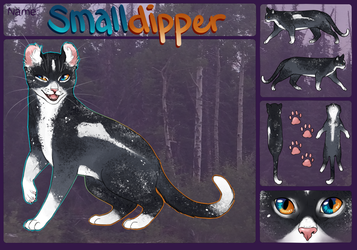 TWG - Smalldipper - MoonClan by MistDapple