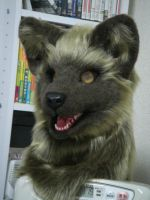 WolfHead Complete by ajisai-rebellion