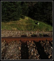 Well across the rails by qdave
