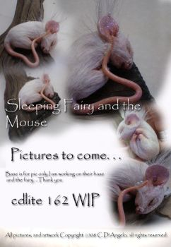 Little mouse A by cdlitestudio