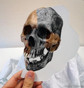 Skull Holding Illusion by AtomiccircuS