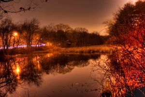 Night Pond Revisited by Elppin