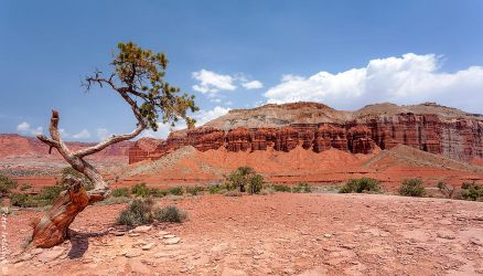 Capitol Reef NP by Pistolpete2007