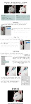 Basic Photo Editing In Three Steps by saraeo