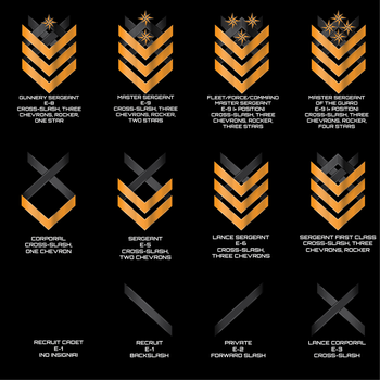 Threshold Guard Enlisted Ranks by Afterskies