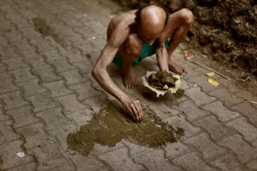 cow dung for ritual purposes by SpellboundMisfits