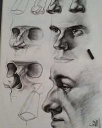 Charcoal Nose study by Jamesonarts