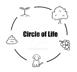 The Circle of Life by Kiffy25081987