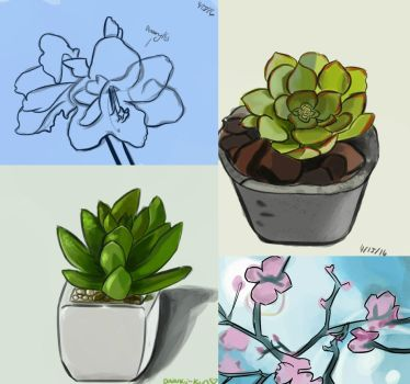 Plant Studies by Vonmizu