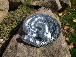 Scalemail Snake - Curled Up on a Warm Rock by demuredemeanor