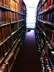 009 - Library Musings by GoddessOfImmaturity