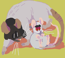 mouse and rat by trainercard