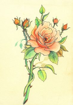 ROSE DRAWING FOR TATTOO by VICTOR5