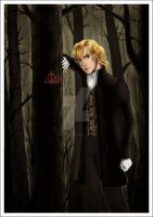 The Early Days of Gellert Grindelwald by Eos-of-Dawn