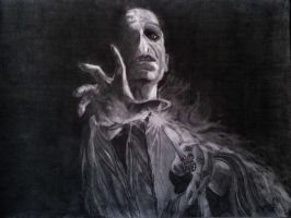 Lord Voldemort by DanloS