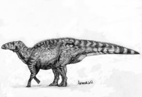 Edmontosaurus regalis, named Dakota. Remake. by Antresoll