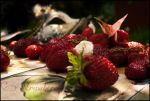 Fruit project - Strawberry by kvicka