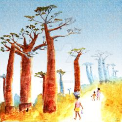 Baobab by Ciloon