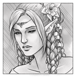 Elvish Braids by Gnewi