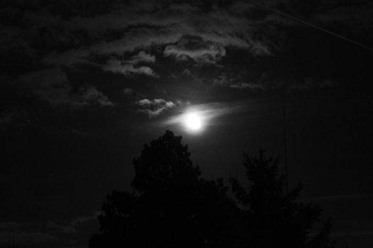 Moon_1 by crdy