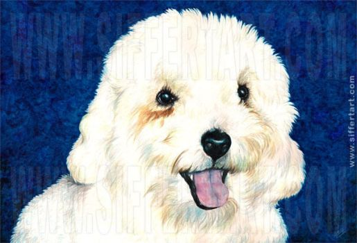 Portrait of a pet by siffert