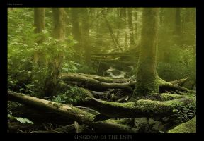 Kingdom of the Ents by Crossie