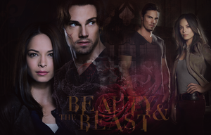 Beauty and The Beast - WP by Vampiric-Time-Lord