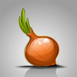 Simple onion. Speed vector art with Inkscape. by Grafikwork