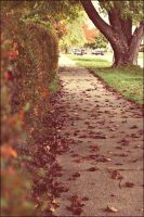 Autumn Streets W e Remember by GrotesqueDarling13