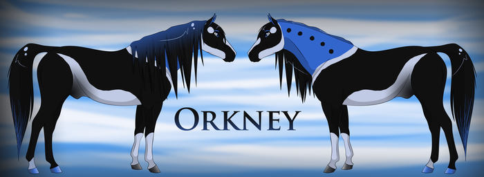 Orkney Ref by Drasayer