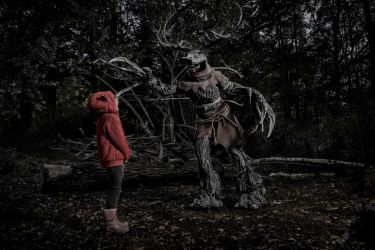 Leshen and modern red riding hood by idromy
