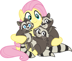 Fluttershy - My Little Raccoon Darlings by Comeha