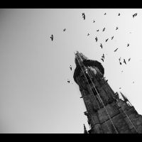 Freiburg by jfphotography
