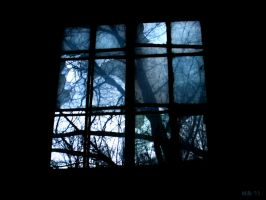 Window by Pluvieuse