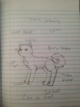 Wow Such Doge by ieizwarriorcat