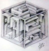 Maze Box by GoldenYak9753