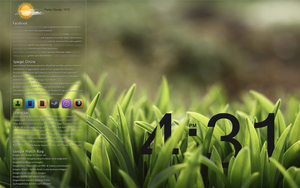 Green Grass Desktop by Sourg