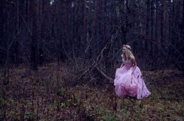 The Lost Princess by LiaSelina