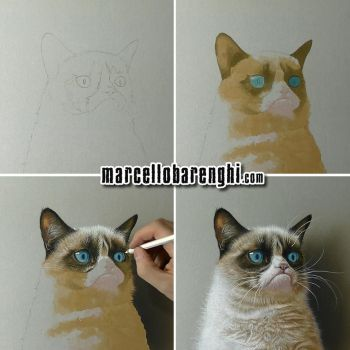 Grumpy Cat step-bystep drawing by marcellobarenghi