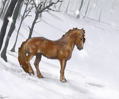 I see the fire by Stillre