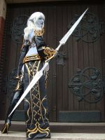 Dark Elf VI by black---butterfly