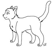 Male Cat Lineart (Sloppy, Hand-made version..) by animalluv10