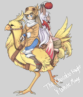 Chocobo Knight and White Mage by tcong