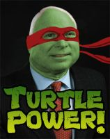 Turtle Power by jdstone