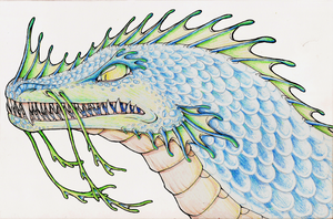 Sea Dragon- Coloured Pencil Practice by Lucieniibi